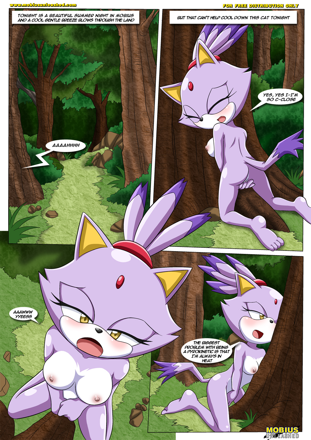 The Heat of Passion - page01 Sonic,  xxx porn rule34