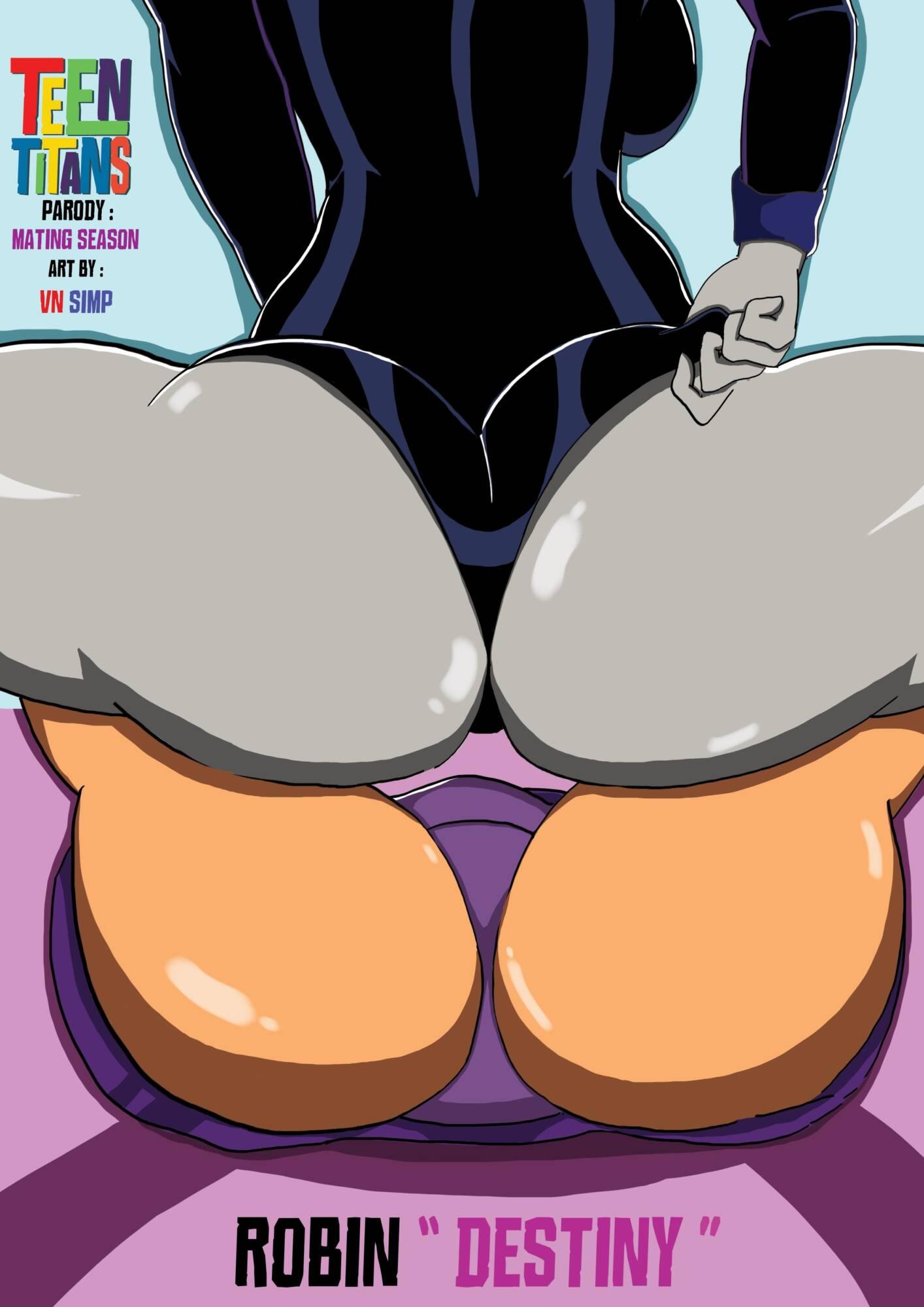 Robin Destiny (English) - page00 Cover DC Comics,Teen Titans,  xxx porn rule34